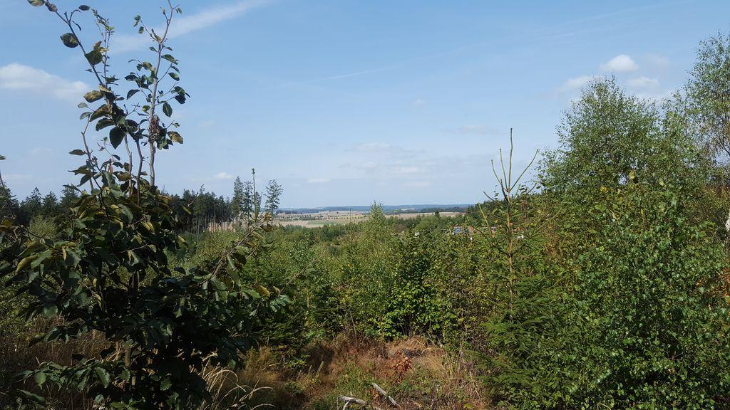 Brilon Blick über die Landschaft